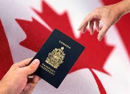 وکیل برای پناهندگی به کانادا- وکیل پناهندگی